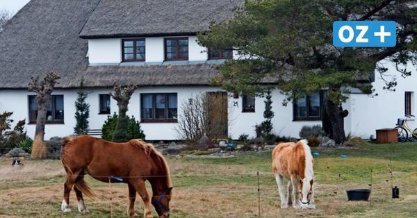 Hiddensee: Bewohner sollen wertvolle Grundstücke zum halben Preis kaufen