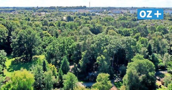 """Herbstferien im Stralsunder Zoo: Jetzt anmelden zum Programm rund ums Thema """"Wald"""""""