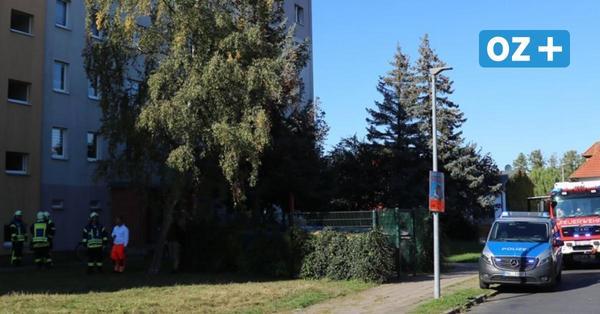 Ribnitz: Darum war die Feuerwehr in der Minsker Straße