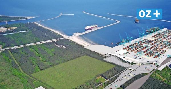 Containerterminal in Swinemünde: Sieben Interessenten für Bau und Betrieb