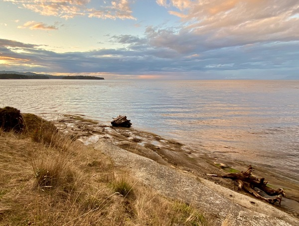 The evening glow gathering next to the shore by Terrill Welch