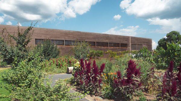 Im Garten der Gläsernen Molkerei wachsen auch die Wiesengräser, die für den Käse verwendet werden.