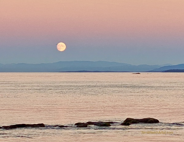 Moonrise and only my iPhone to capture it by Terrill Welch