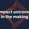 Maze X Startup Accelerator - Impact unicorns in the making