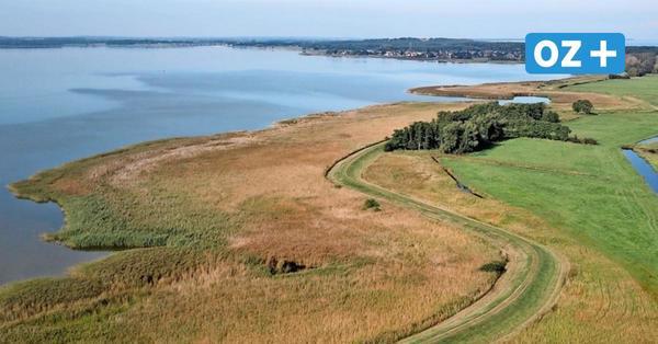 Radweg für Touristen am Usedomer Achterwasser geplant: Hier soll er verlaufen