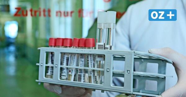 Starker Anstieg der Corona-Zahlen in MV: 43 Neuinfektionen innerhalb eines Tages