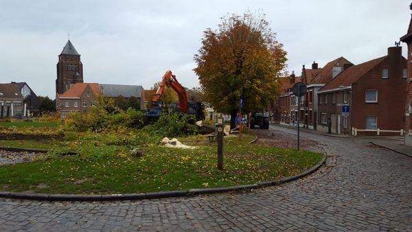 Des arbres retirés à Dries à Kemmel - Bomen gerooid op Dries in Kemmel