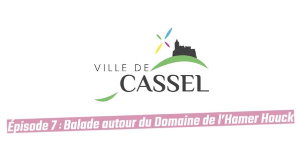DECOUVREZ CASSEL : Le Domaine de l'Hamer Houck - Ontdek Cassel met Le Domaine de l'Hamer
