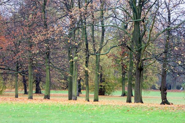 Zum Abschluss: Abstecher durch den Stünzer Park. Quelle: Kempner (Archiv)