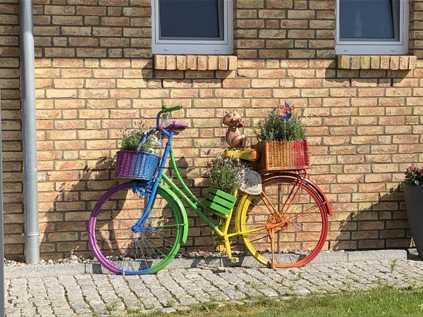 Das bunte Rad steht in der Straße Utkiek in Bad Doberan (Foto: Cora Meyer)