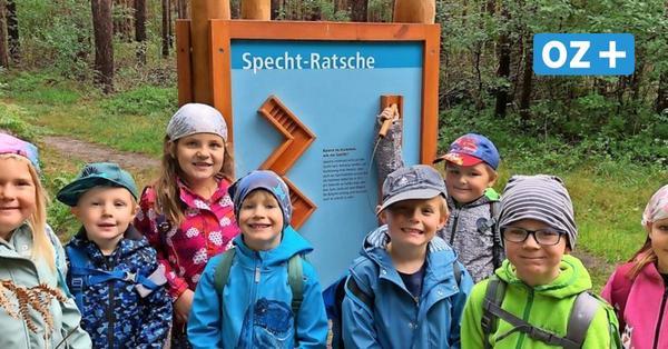 Hier können Kinder den Wald in Fuhlendorf mit allen Sinnen erleben