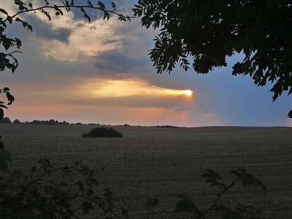 Landschaft mit Sonne (Foto: Maria Grün)