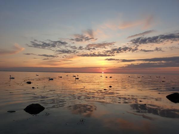 Sonnenuntergang am Strand von Wangern (Foto: Stefanie Adam)
