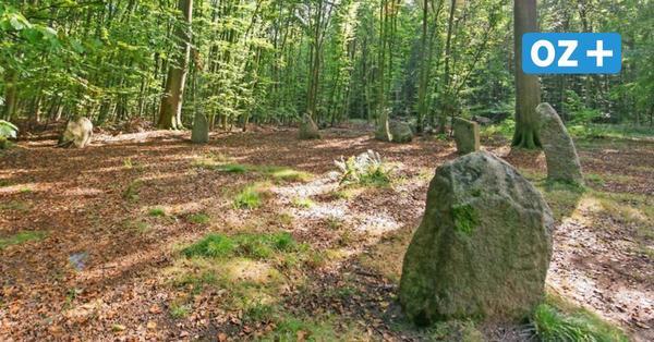 """""""Stonehenge von MV"""": Mit den Steinkreisen von Boitin stimmt etwas nicht"""