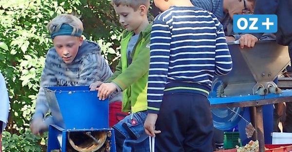 Zurower Dorfschüler sammeln Müll und machen Apfelsaft