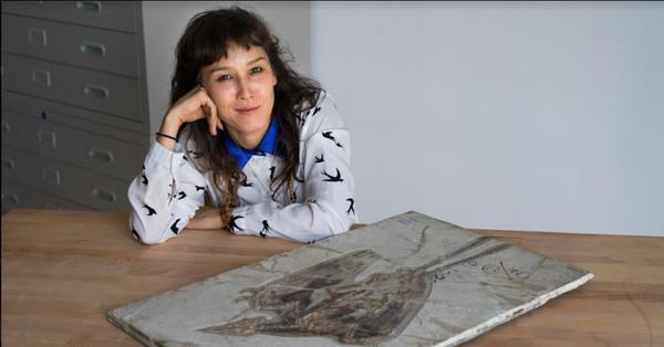 Field Museum's new dinosaur curator is a 'punk rock' paleontologist