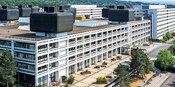 Universitätsmedizin Göttingen: Zwei Fachkliniken sind weltweit Spitze