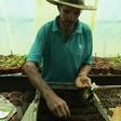 Namibian farmers turn to locally produced biochar as fertilizer - Global Times