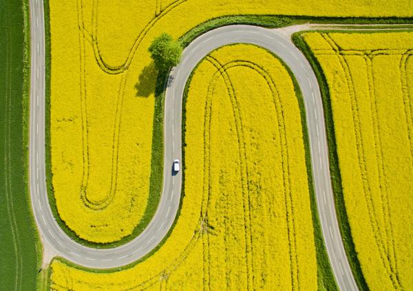 Der Weg zum Nienstedter Pass über den Deister aus der Vogelperspektive. (Foto: Julian Stratenschulte, dpa)