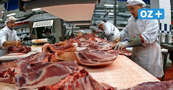 Wieder eine Fleischfabrik: So kam es zum Rekord bei den Corona-Neuinfektionen in MV