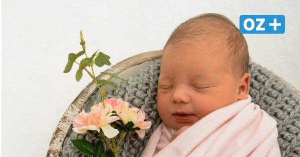 Diese Babys sind in Stralsund geboren: Willkommen Mala, Malia und Miro