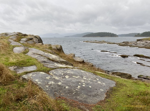 The tip of Edith Point in the rain, winds and mist by Terrill Welch