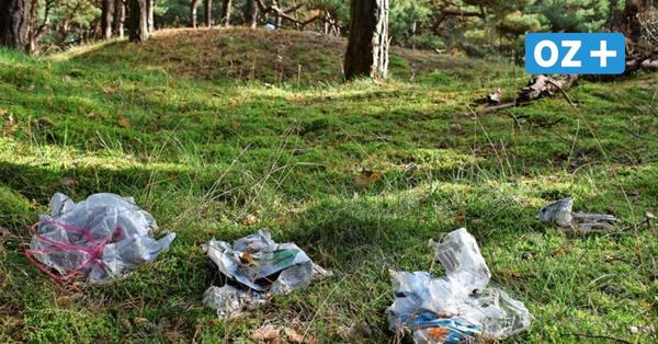 5 vor 12: Tourismusverband bittet zur Müllsammelaktion auf Rügen