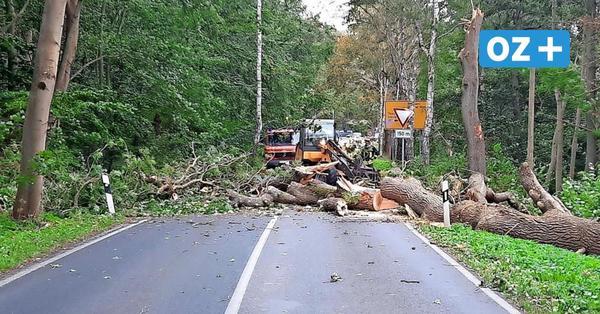 Landkreis Vorpommern-Rügen: Sturmtief Gisela löst sieben Einsätze aus