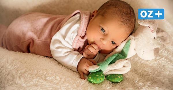 Geburten-Boom in Stralsund: Willkommen Hanna, Malina und Arthur