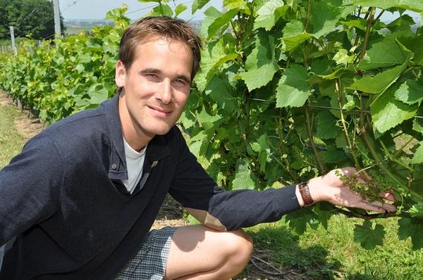 Le domaine viticole de l'Entre-Deux-Monts a reçu plusieurs prix. - Wijndomein Entre-Deux-Monts valt in de prijzen