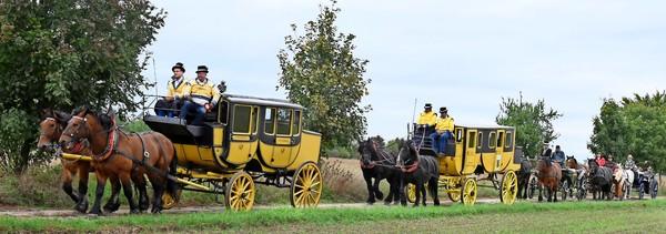 Die Postkutsche tourt durch den Dübener Naturpark.  Foto: Waltraud Grubitzsch
