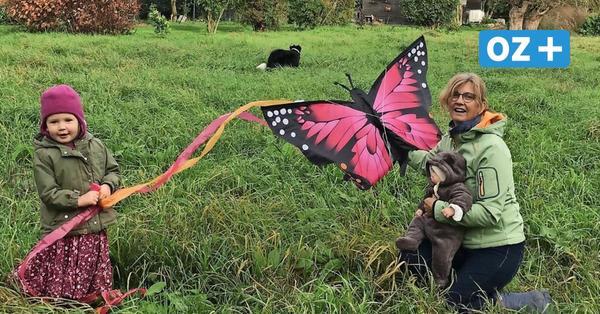 Windiges Hobby: Drachensteigen hat in Vorpommern viele Fans