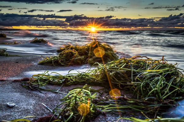 Sonnenuntergang am Strand von Dierhagen (Foto: Katrin Schäfer)