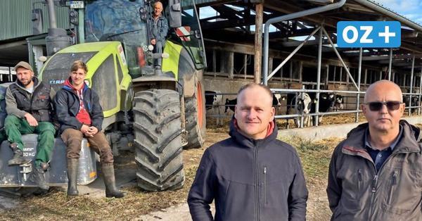 Besser als erwartet: Nordwestmecklenburger Landwirte sind mit Ernte zufrieden