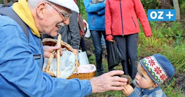 Woche der Nachhaltigkeit auf Rügen: Mit Experten auf Pilzsuche in der Baaber Heide