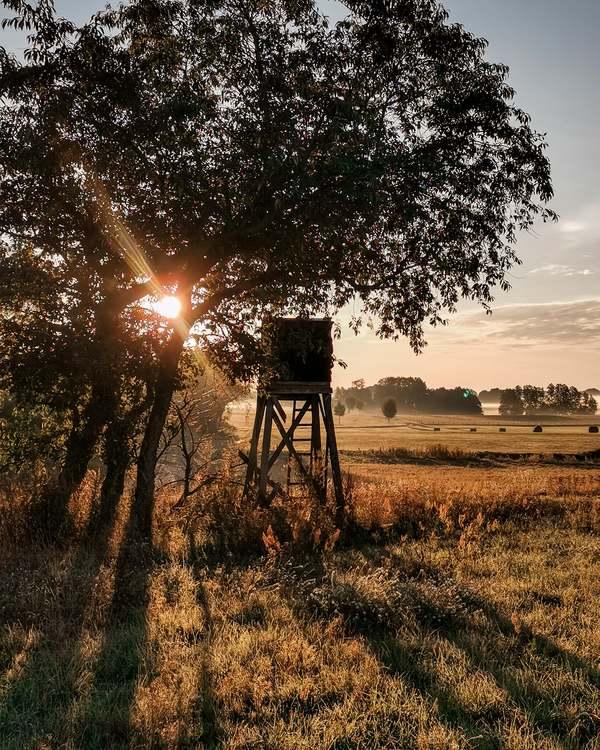 Guten Morgen Welt (Foto: Ann-Kathrin Günther)