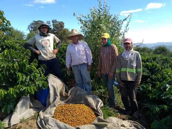 Brazil: Writing A New Story For Coffee In Andradas