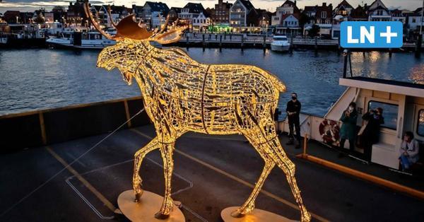 Lübeck: Travemünder Elche (TRelche) leuchten erstmals auf dem Priwall