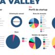 Mapeamento de Startups na Comunidade Costa Valley - Dados e informações relevantes de 2020