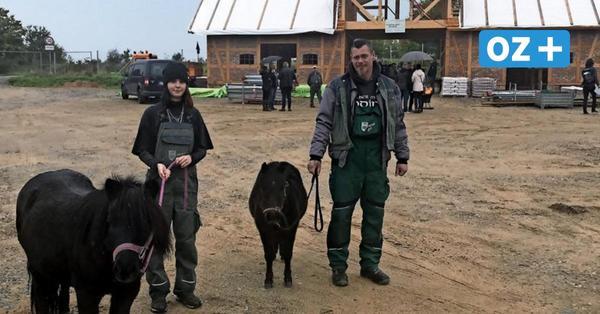 Wismarer Tierpark: Hier entsteht ein neuer Bauernhof