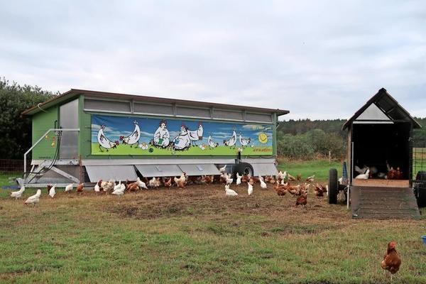 Ins Hühnermobil gehen die Hühner zum Schlafen und Eierlegen. Das kleine Mobil rechts ist übrigens der Schlafplatz der vier Ziegen, die Greifvögel von den Hühnern fernhalten sollen.