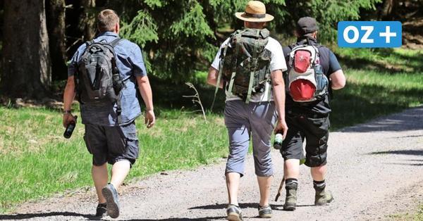 Wandern an der Ostseeküste: Das sind die schönsten Hikingtouren in MV