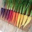 Carrots Are Orange For Purely Political Reasons. Here's How We Lost The Rest of the Rainbow.