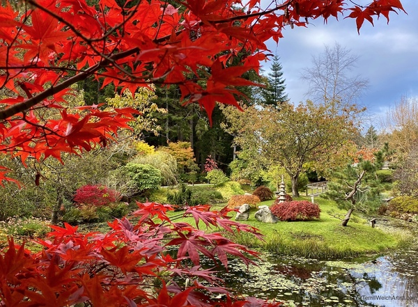 Autumn in the Mayne Island Japanese Garden by Terrill Welch