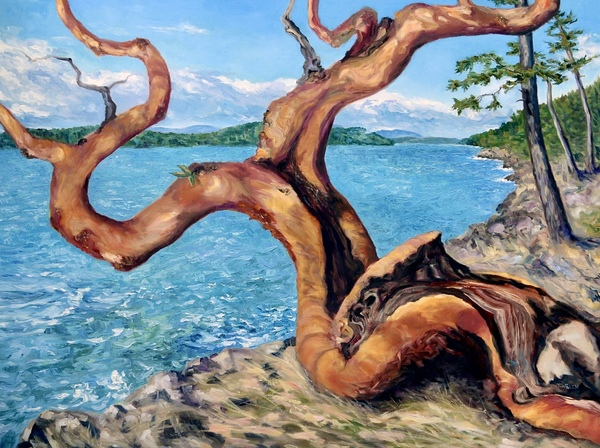 "Available- ""Arbutus Tree in Breaking Sun"" by Terrill Welch, 36 x 48 inches."