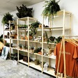 Terra Cotta Plants Seeds for Success for Black Owned Businesses and Creatives