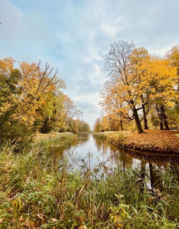 Herbststimmung am Schloss-Teich (Foto: Laura Sitarek-Schulz)