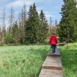 Wandern im Harz: Wege-Netz in Niedersachsen verkleinert und optimiert