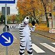 Die Boltenhagener Straße hat einen zweiten Zebrastreifen