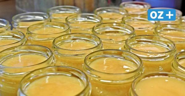 Bienen produzieren Honig auf Ihlenberger Deponie: Warum das ein gutes Zeichen ist